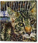 Kitty Vangoghed Canvas Print