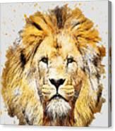 Kjjknknkj Canvas Print