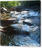 Knee Deep In Mountain Water Canvas Print