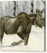 Knee Deep In Snow Canvas Print