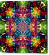 Knots Xvii Canvas Print