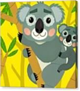 Koala Bears Canvas Print