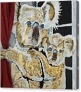 Koalas Canvas Print