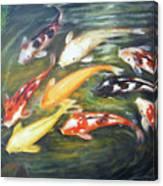 Koi 1 Canvas Print