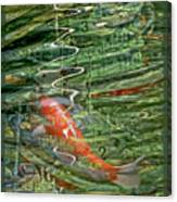 Koi Boats Canvas Print