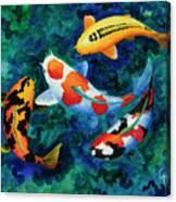 Koi Group Canvas Print
