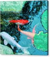 Koi Pond 4 Canvas Print