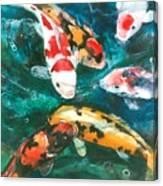 Koi V Canvas Print