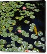 Koi With Lily Pads E Canvas Print