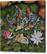 Kois In A Pond Canvas Print
