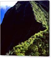 Koolau Summit Trail Ridge Canvas Print