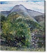 Kopberg Heidelberg Western Cape South Africa Canvas Print