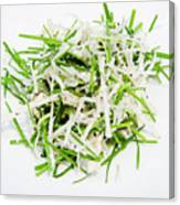 Korean Traditional Fresh Vegetable Salad Canvas Print