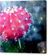 Kozmic Cactus Canvas Print