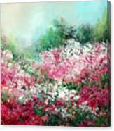Kukenhof Rhododendrums Canvas Print