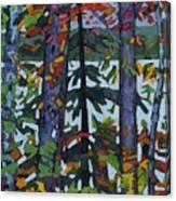 Kushog Colours Canvas Print