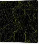 L2-74-212-255-0-3x4-1500x2000 Canvas Print