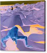 La Fin Des Illusions 2 Canvas Print