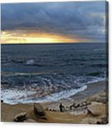 La Jolla Shores Beach Panorama Canvas Print