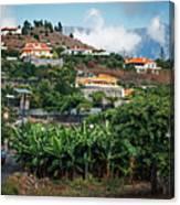 La Palma - Los Llanos Canvas Print