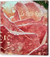 La Petite Rose Canvas Print