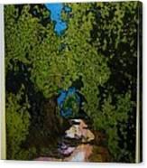 La Romita Road Canvas Print