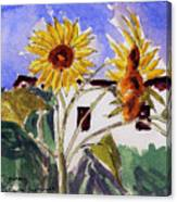 La Romita Sunflowers Canvas Print
