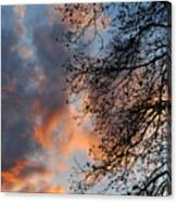 Lace In The Sunset Canvas Print