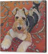 Wire-haried Fox Terrier Canvas Print