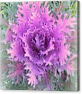 Lacey Plant Canvas Print
