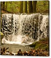 Lacy Waterfall Canvas Print