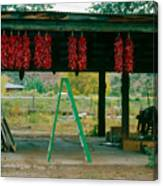 Ladder And Ristras Sopyn's Fruit Stand Rinconada Nm Canvas Print