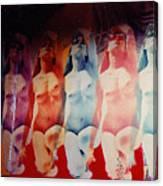 Ladies Room Canvas Print