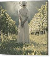 Lady In Vineyard Canvas Print