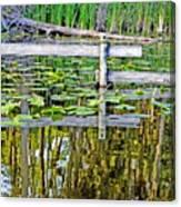 Lago Valla Canvas Print