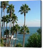 Laguna Beach, Southern California 2 Canvas Print