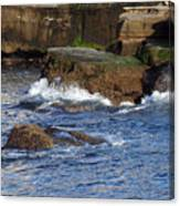 Lajolla Rocks Canvas Print