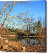 Lake And Trees In Early Spring Canvas Print