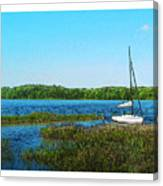 Lake At Hamony Fl Canvas Print