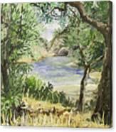 Lake At St Remy Canvas Print