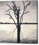 'lake Bonney' Canvas Print