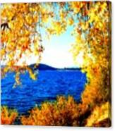Lake Coeur D'alene Through Golden Leaves Canvas Print