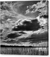 Lake Dora Black And White Canvas Print