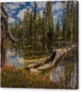 Lake Eleanor Canvas Print