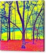 Lake Eyed Canvas Print