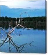 Lake Fryer Tree Canvas Print