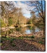 Lake In Early Springtime Woodland Canvas Print