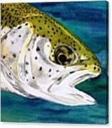 Lake Leopard Canvas Print