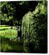 Lake Mirror Canvas Print