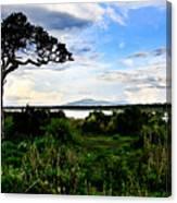 Lake Ndutu Shores Canvas Print